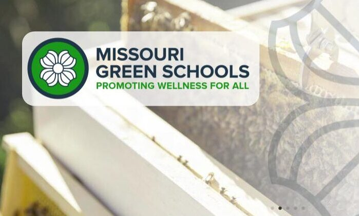 Learn about support and recognition for schools to improve health, lower environmental impact, and provide sustainability education.